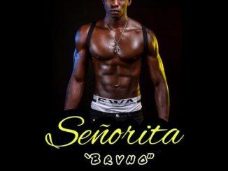 Music: Brvno - Senorita