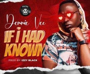 Download Music: Demmie Vee – If I Had Known