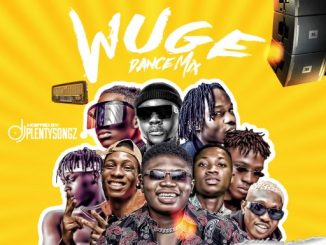 DJ MIX: DJ PlentySongz - Wuge Dance Mix #Street