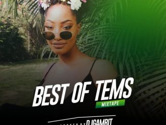 Dj Mix: DJ Gambit - Best Of Tems Mix