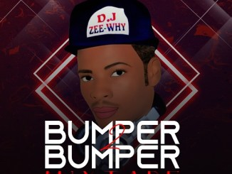 DJ Mix: DJ Zeewhy - Bumper 2 Bumper Mix