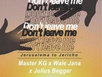 Master KG ft Wale Jana and Julius Begger - Don't Leave Me
