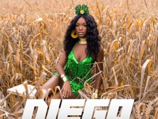 Music: Savannah Britt - Diego ft. Victoria Kimani, R. City & T.U.C