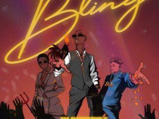 Music: Blaqbonez Ft. Amaarae & Buju – Bling
