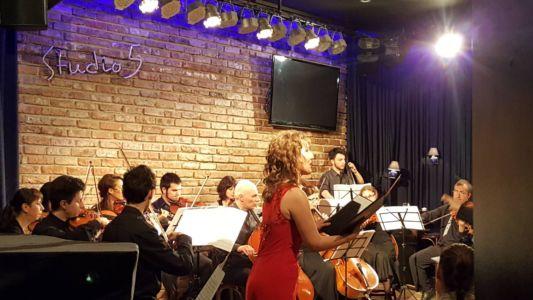Concert (20)
