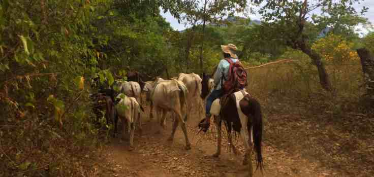 local farmer on the way to Telica Volcan
