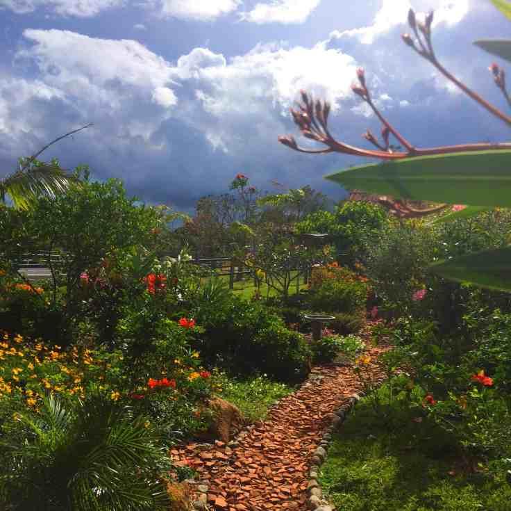 Garden on the Hacienda in Boquete Panama