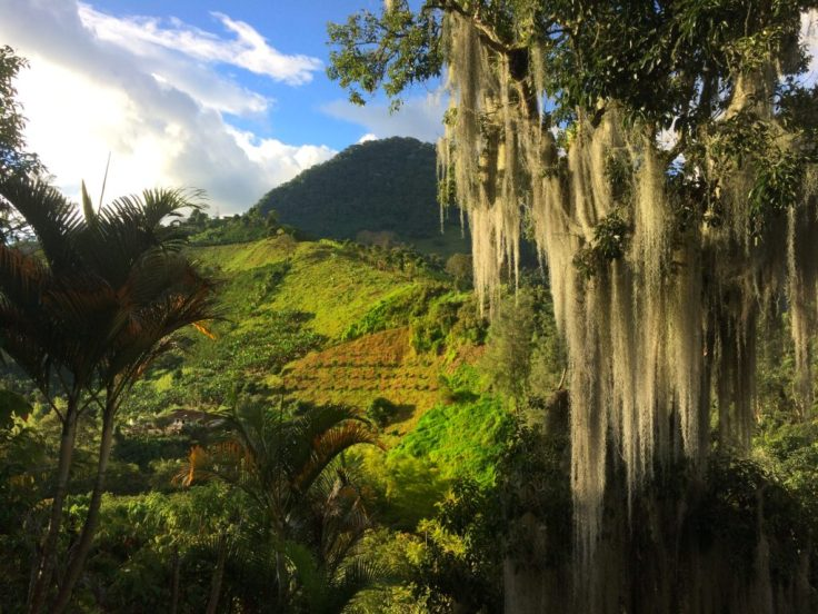 Steep Mountain farms in Jardín Colombia