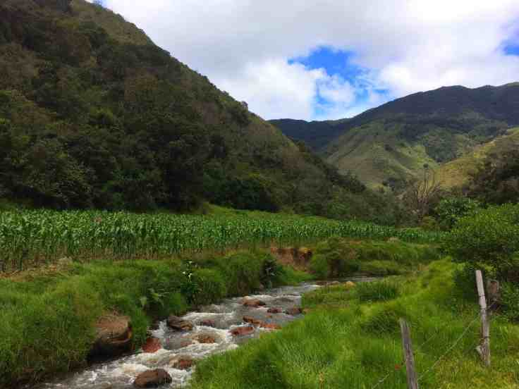Stream near Villa de Leyva