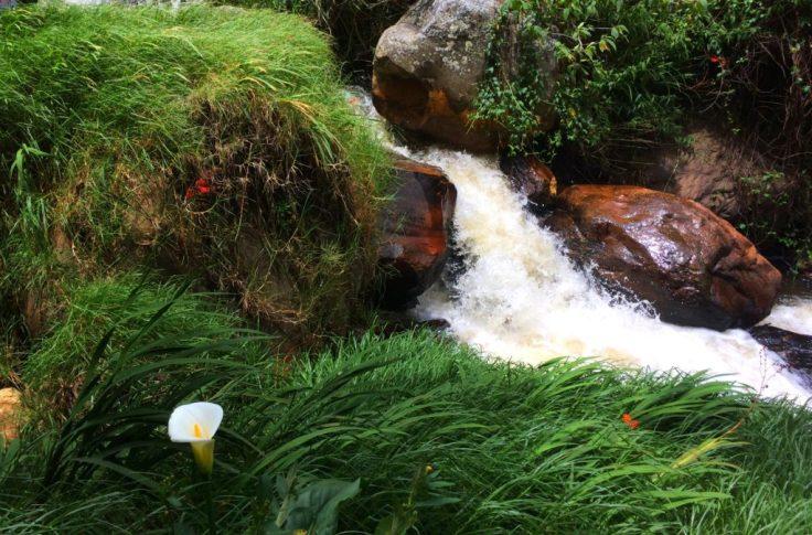 stream running into Villa de Leyva