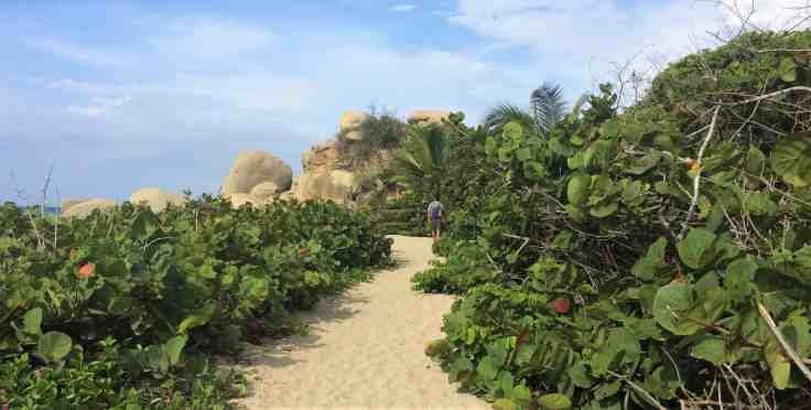Trail in Tayrona National Park north of Cartagena, Colombia