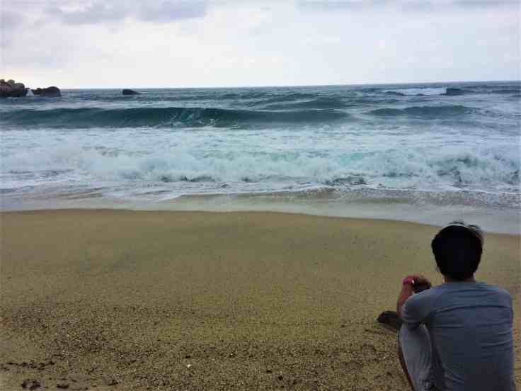 Tayrona National Park our year in review