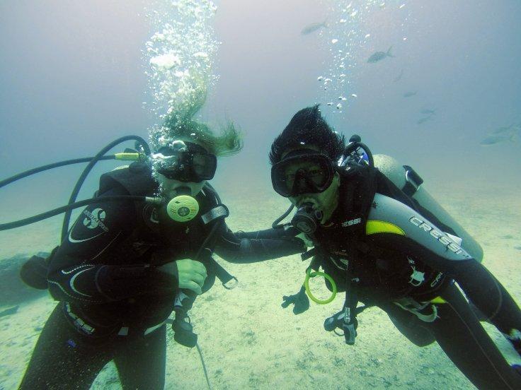 Diving Seymore