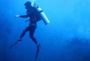 Coiba diving