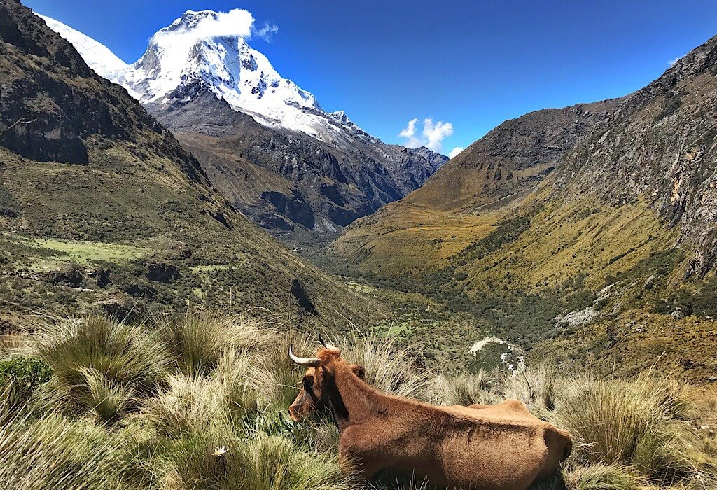 Snow Capped mountain: Peru Treks
