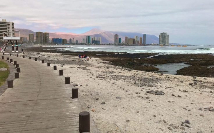 Iquique Coast examples of resilience