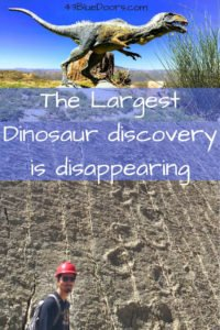 Pin for Pinterest Largest dinosaur discover is disappearing.