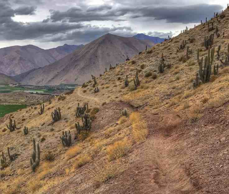 Elqui Valley hiking trail