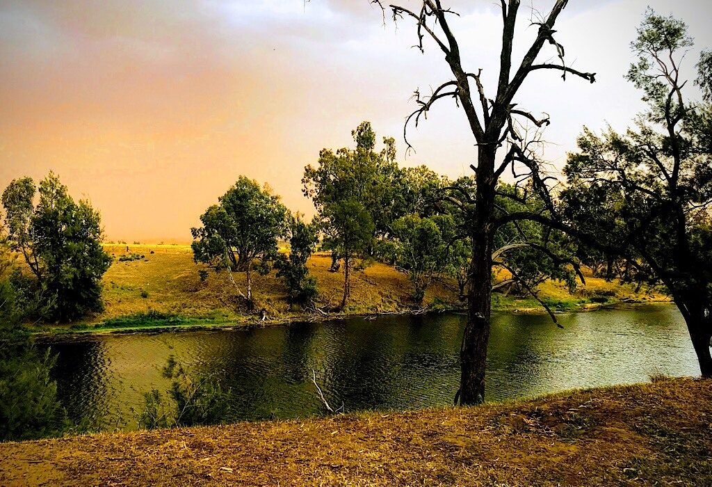 Mid afternoon dust in the wind along the Macquire River in New South Wales Australia