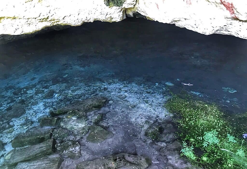 Deceptive Water in the cave opening of the fossil cave sinkhole
