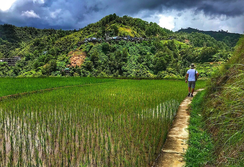Trin walking along the edge of a rice paddy in the Ifugao region of Philippines