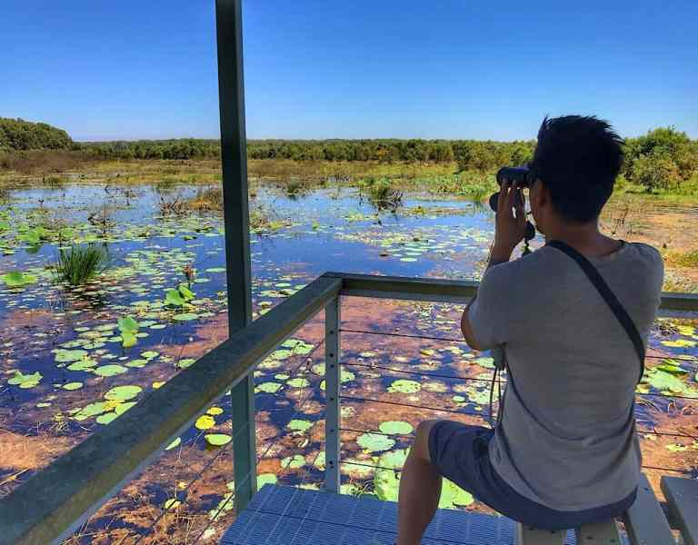 Trin looking over the wetlands covered with Lilly pads