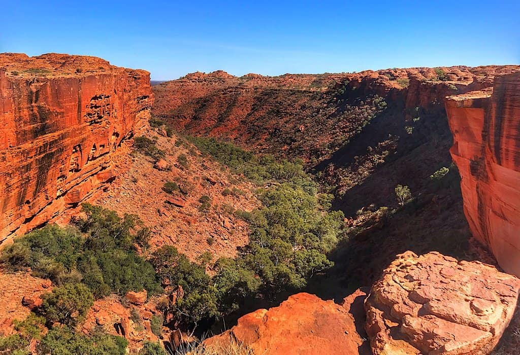Looking down into Kings Canyon