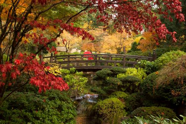 Japanese garden portland - best scenic roads drives in Oregon