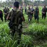 ¿Caguanazo a las FARC-EP?