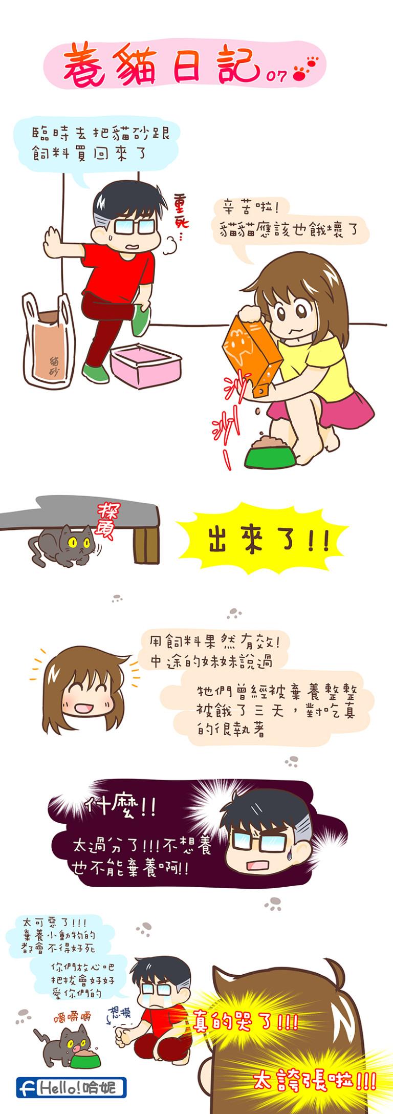 養貓07-768x2176