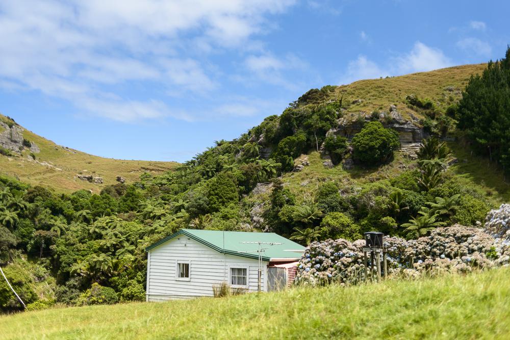 New Zealand Travel D2 Naomi VanDoren-5