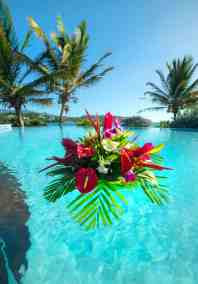 flower-at-the-pool