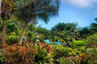 outdoor-garden-view