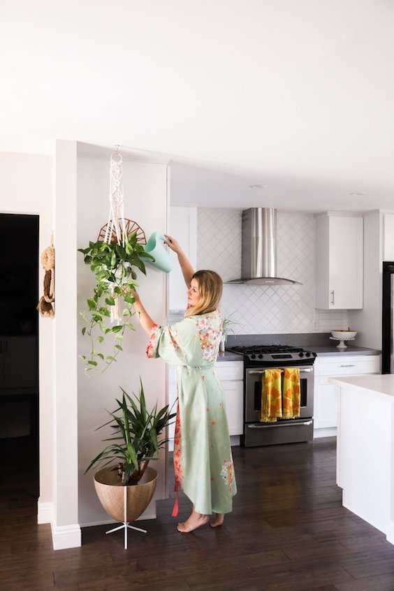 7 Gorgeous Indoor Hanging Houseplants Glitter Guide