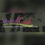 Introducing: Veveed Cash Rises