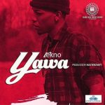 AUDIO + VIDEO: Tekno – Yawa