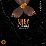 CDQ - Shey Normal (Prod. Philkeyz)