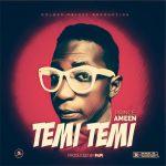 Prince Ameen – Temi Temi (Prod By Papi)