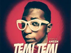 Prince Ameen - Temi Temi (Prod By Papi)