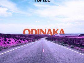 Tspize x DJ Neptune x Duncan Mighty – Odinaka (Street Praise)