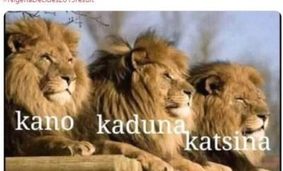 Hilarious tweets of Nigerians describing election results from Kano, Kaduna and Katsina states as