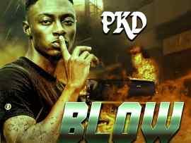 PKD – Blow
