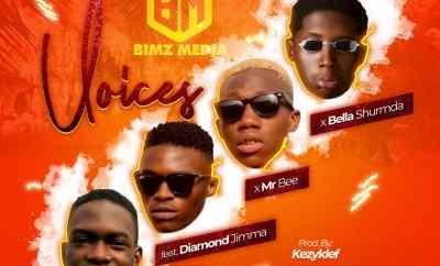 Bimz Media x Mr Bee x Diamond Jimma x Bella Shmurda - Voices