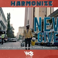 VIDEO: Harmonize – Never Give Up