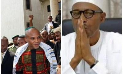 Just like Ekweremadu, we will disgrace Buhari in Japan- Nnamdi Kanu