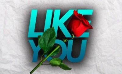 Kelvin - Like You