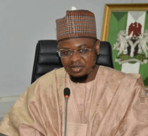 Minister of Communication orders suspension of new USSD service charge