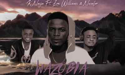 K Naija Ft. Lion Williams & Nwafor - Wazobia
