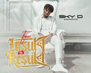 EP: Sky D - From Insults To Results (FITR)