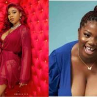 The Real Runs Girl is in The House With Dorathy - Toyin Lawani Reacts To Photo of BBNaija Housemate Allegedly Found On Escort Service Website